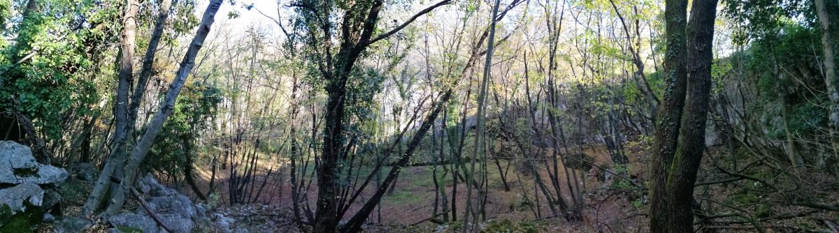 Sentiero Cai 31 - 47 : Grotta del pettirosso, del monte Napoleone, Pocala e l'abisso viadotto ferroviario.