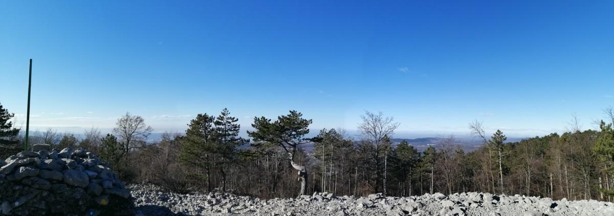Sentiero n°28 - da Pesek di Grozzana alla cima del monte Cocusso